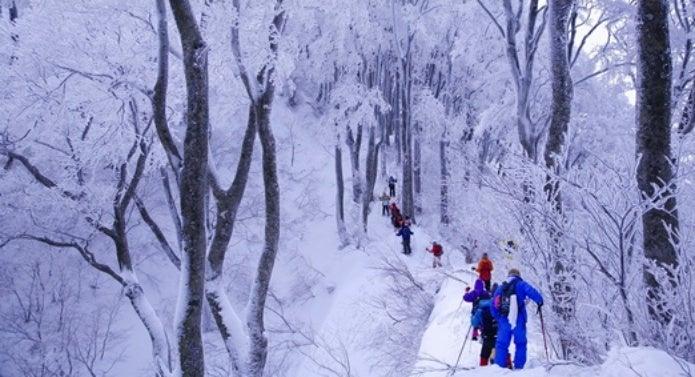 大山のスノーシューツアー