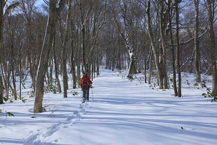 大山をスノーシューで歩く