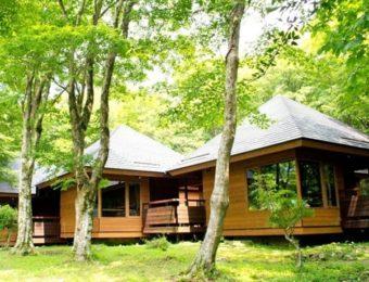 神奈川県のキャンプ場芦ノ湖キャンプ村