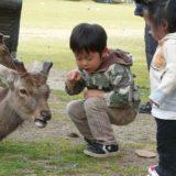 奈良のキャンプ場