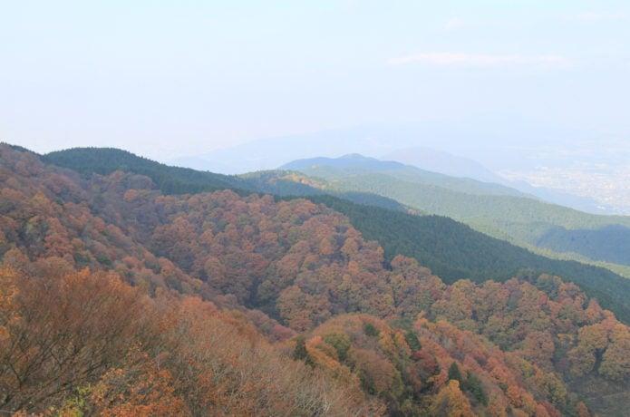 大和葛城山の紅葉