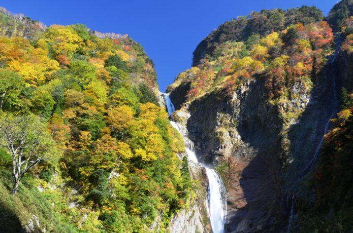 色付きはじめの称名滝