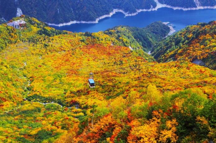 大観峰からの紅葉景色