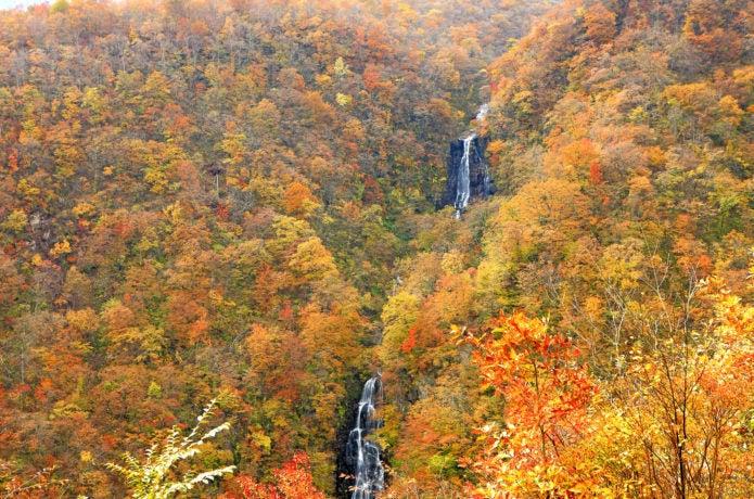 三階の滝の紅葉