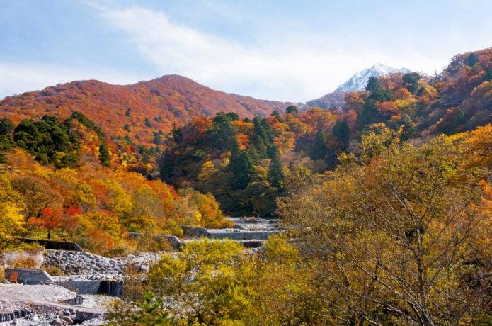 南光河原から見る大山の紅葉