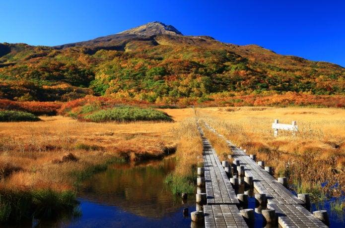 紅葉の鳥海山(竜が原湿原)