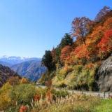 白山ホワイトロードの紅葉