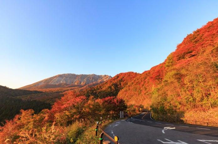 鍵掛峠からのドライブで見る紅葉