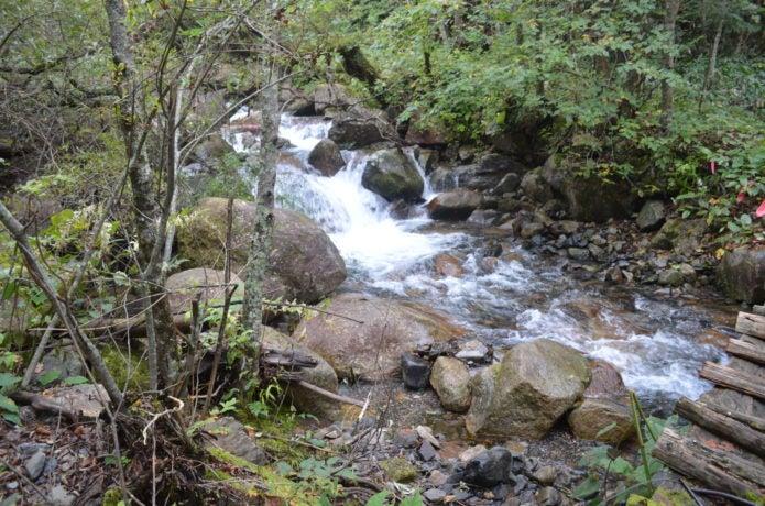 黒井沢の登山道