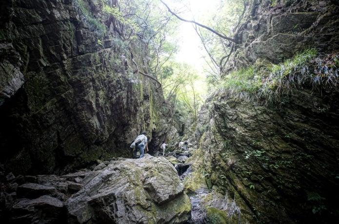 棒ノ折山登山コース中の沢