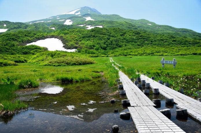 鳥海山 竜ヶ原湿原