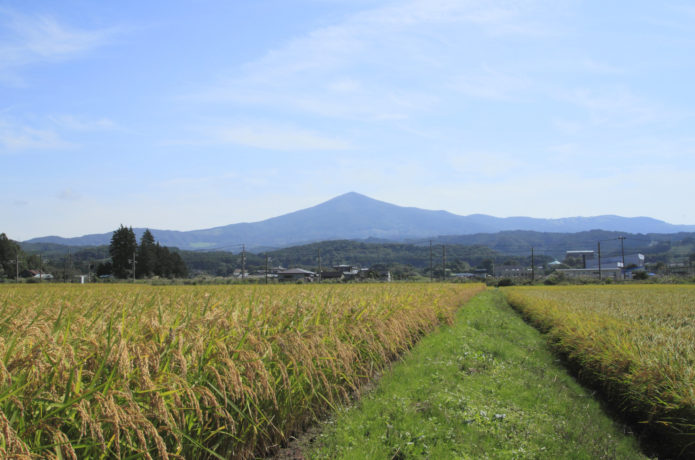 姫神山と田園