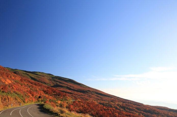 鳥海ブルーラインの紅葉