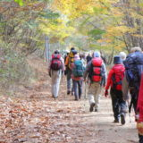 登山ツアーに参加して登山に行く人々