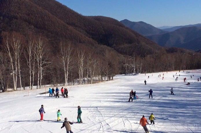 Mt.乗鞍スキー場で滑る人々