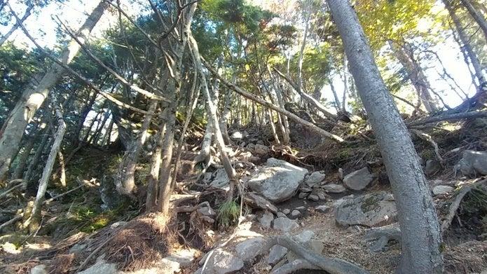 皇海山山頂直下の急登