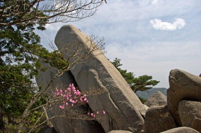 御在所岳のおばれ石