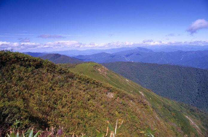 能郷白山からの眺め