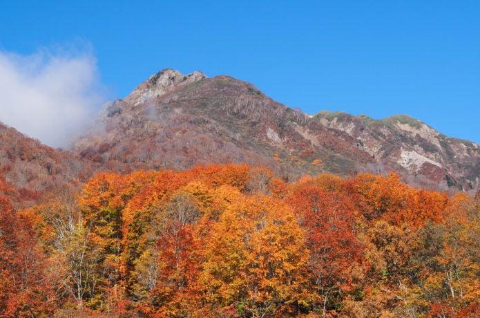 雨飾山で紅葉登山!ブナ林や三段紅葉など見どころスポットや混雑状況を紹介